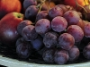 fruchtschale-k-n.jpg